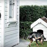 Как обезопасить свой дом от краж и воров?
