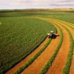 Стоимость гектара земли в Украине