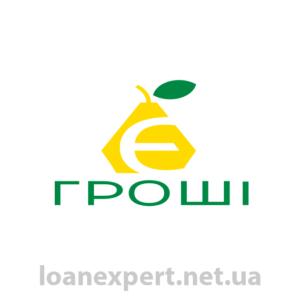 Быстрый онлайн займ в E-groshi