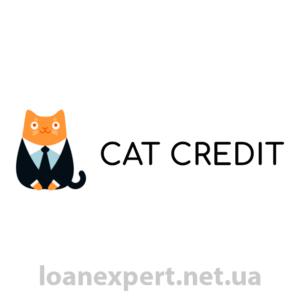 Взять займ в CatCredit